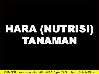 HARA (NUTRISI)  TANAMAN