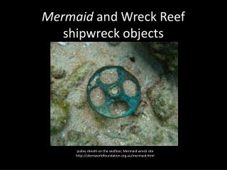 M ermaid  and Wreck  R eef shipwreck objects