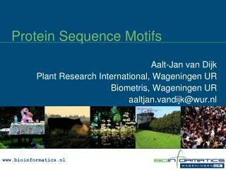 Protein Sequence  Motifs