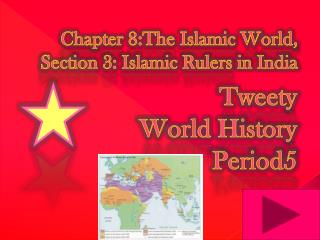 Chapter 8:The Islamic World, Section 3: Islamic Rulers  in India