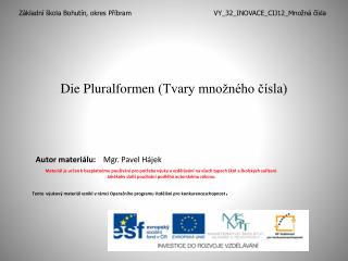 Die  Pluralformen  (Tvary množného čísla)
