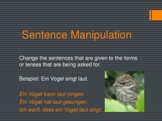 Sentence Manipulation