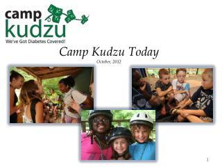 Camp Kudzu Today October,  2012