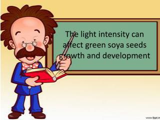The light intensity can affect green soya seeds growth and development