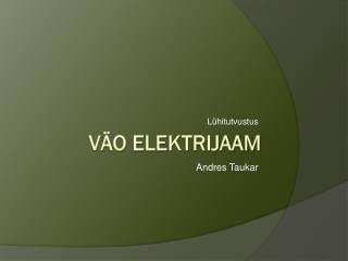 Väo elektrijaam