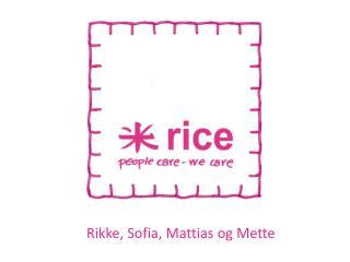 Rikke, Sofia, Mattias og Mette