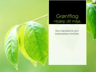 Grøntflag -Hjælp dit miljø.