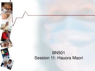BN501 Session 11 : Hauora Maori