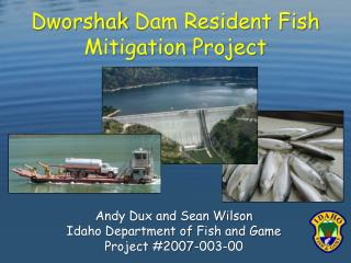 Dworshak  Dam Resident Fish Mitigation Project