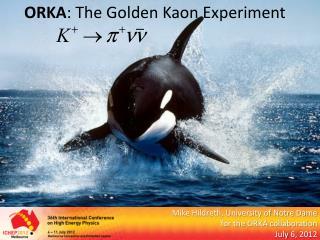 ORKA : The Golden  Kaon  Experiment