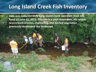 Long Island Creek Fish Inventory