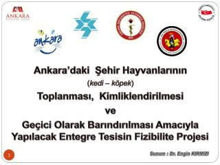 Ankara'daki  Şehir Hayvanlarının  ( kedi – köpek )  Toplanması,  Kimliklendirilmesi  ve