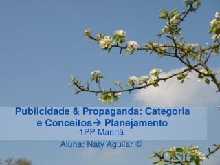 Publicidade & Propaganda: Categoria e Conceitos   Planejamento