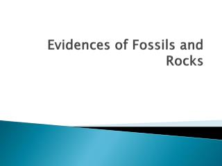 Evidences of Fossils and Rocks