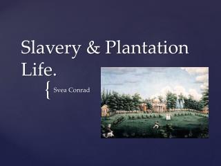 Slavery & Plantation Life.