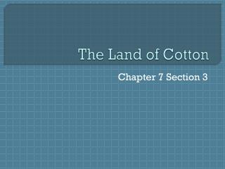 The Land of Cotton
