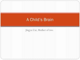 A Child�s Brain