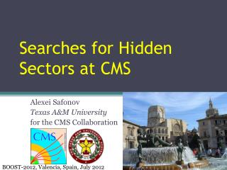 Searches  for  Hidden Sectors at CMS