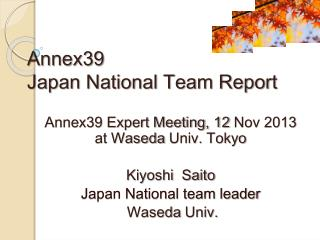 Annex39 Japan National Team Report