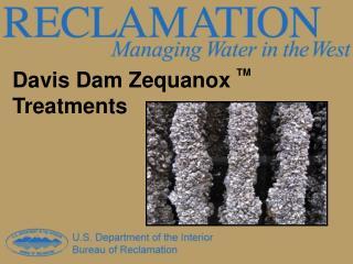 Davis Dam Zequanox  TM  Treatments