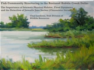 Fish Community Structuring in the Restored Hobble Creek Delta :