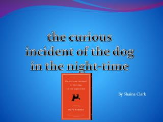t he curious incident of the dog in the night-time