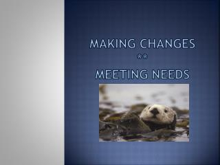 Making changes ** Meeting needs