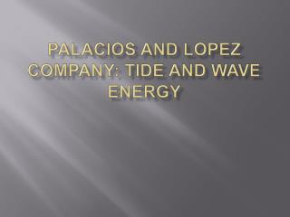 PALACIOS AND LOPEZ COMPANY: TIDE AND WAVE ENERGY