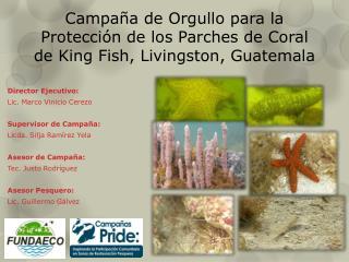 Campaña de Orgullo para la Protección de los Parches de Coral de King Fish, Livingston, Guatemala