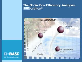 The Socio-Eco-Efficiency Analysis: SEEbalance
