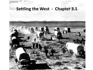 Settling the West  -  Chapter 3.1