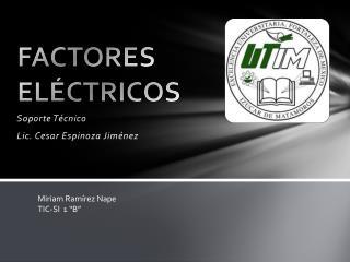 FACTORES ELÉCTRICOS
