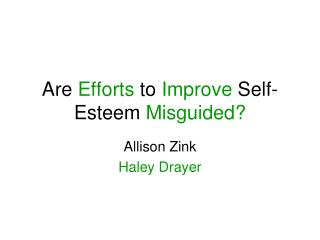 Are  Efforts  to  Improve  Self-Esteem  Misguided?