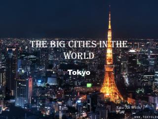 The Big cities in the world