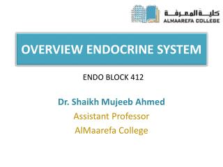 OVERVIEW ENDOCRINE SYSTEM