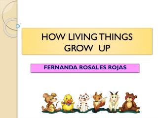 HOW LIVING THINGS  GROW   UP