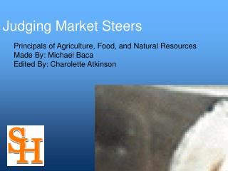 Judging Market Steers