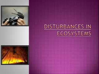 DISTURBANCES in ECOSYSTEMS