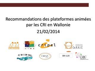 Recommandations des plateformes animées par les CRI en Wallonie  21/02/2014