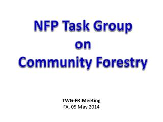 NFP Task Group  on Community Forestry