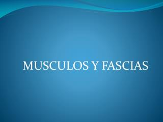 MUSCULOS Y FASCIAS