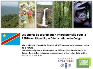 Les arrangements institutionnels de la phase de préparation à la REDD+