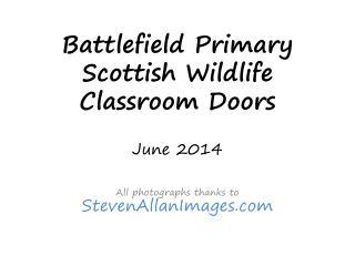 Battlefield Primary  Scottish Wildlife  Classroom Doors June 2014