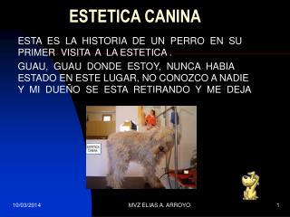 ESTETICA CANINA