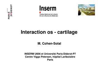 Interaction os - cartilage