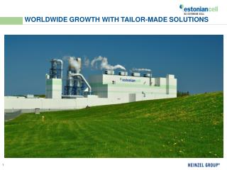 WORLDWIDE GROWTH WITH TAILOR-MADE SOLUTIONS