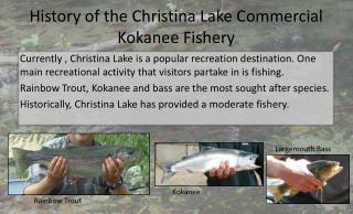 History of the Christina Lake Commercial Kokanee Fishery