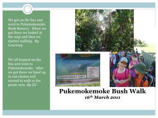 Pukemokemoke Bush Walk  16 th  March 2011