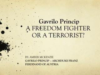 Gavrilo Princip A FREEDOM FIGHTER OR A TERRORIST?