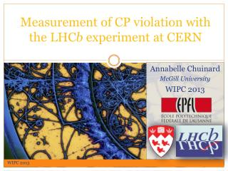 Measurement  of CP violation  with  the LHC b  experiment  at  CERN